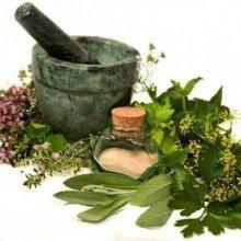 Полынь, пижма, гвоздика: целебные свойства растений