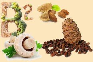 Грибы, орехи - источник ценного витамина