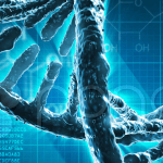 Что нужно знать о мономерном пролактине?