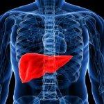 Хроническая печеночная недостаточность: особенности заболевания