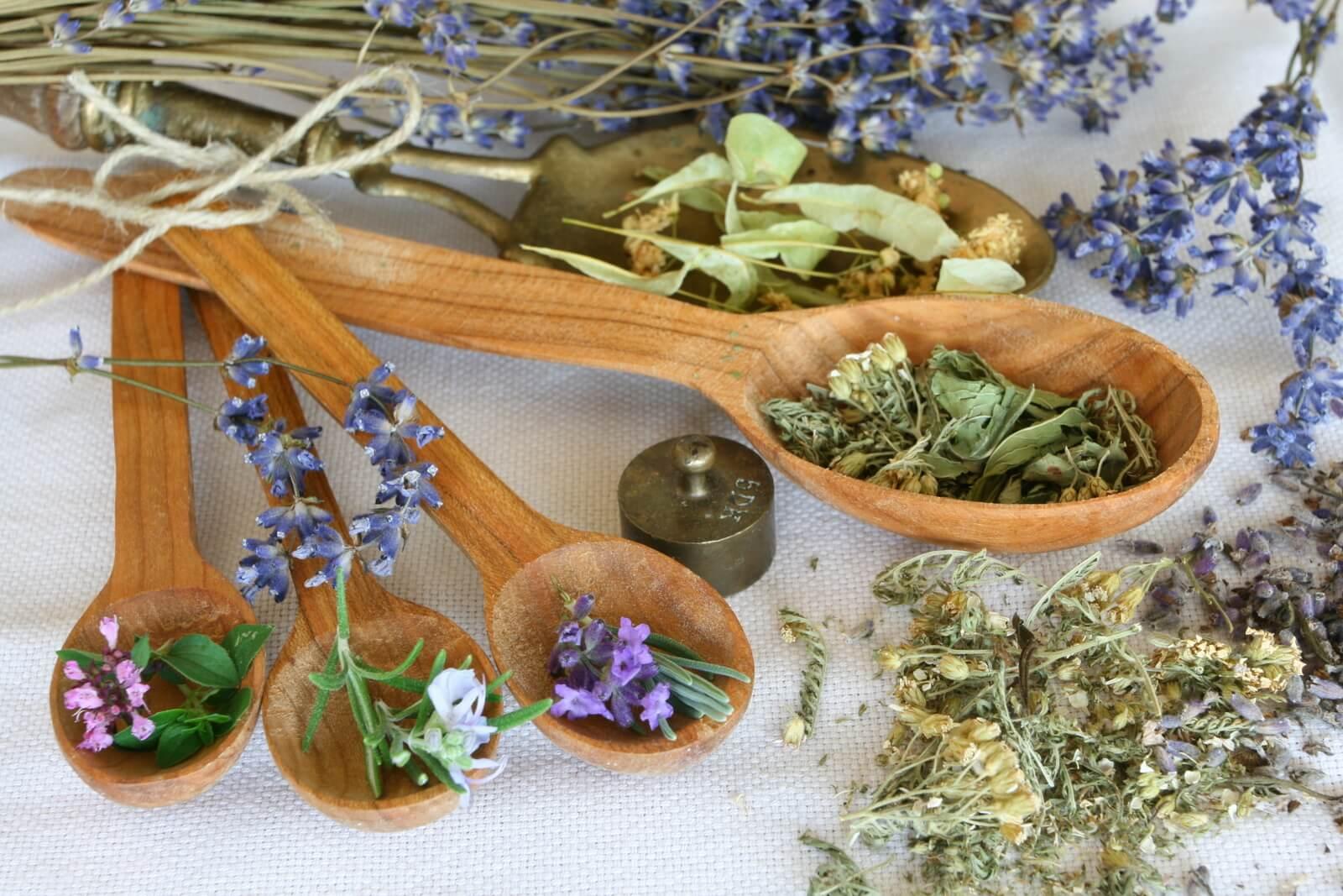Народные рецепты из лекарственных трав