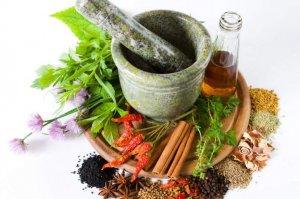 О травах, которые помогают сбросить лишний вес нужно знать