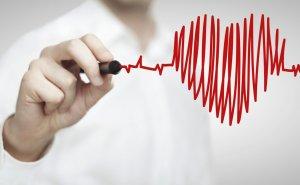 Эхокардиоскопия при обследовании сердца