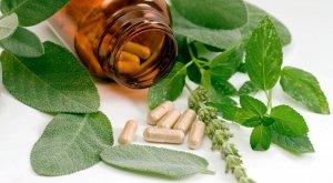 Использование фитопрепаратов для отсрочки менопаузы