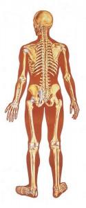 Основные симптомы рака костей