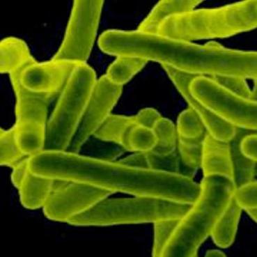 Первые признаки туберкулеза у взрослых