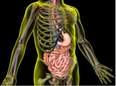 Лечение заболеваний кишечника