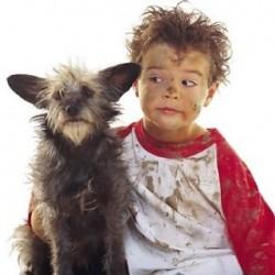 Дети обязательно должны мыть руки с мылом после  контакта с животными