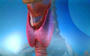 Неоднородная структура щитовидной железы: причины