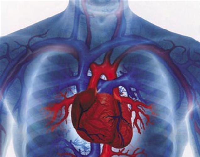 Синдром реполяризации сердца: симптомы, лечение, прогнозы
