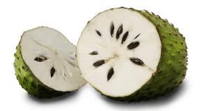 Гравиола гуанабана: целебные свойства тропической жительницы