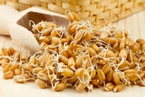 Зародыши пшеницы также богаты на содержание цинка