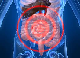 При наличии симптомов нарушения в работе кишечника необходимо обратиться за помощью к специалисту