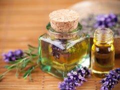 Лаванда: ценное эфирное масло и его свойства