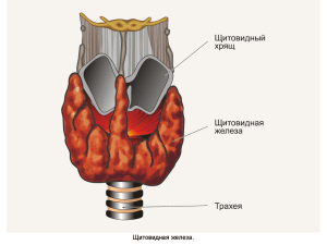 Недостаток гормонов щитовидной железы - это гипотереоз