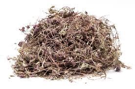 Целебные свойства чабреца используют для лечения различных болезней