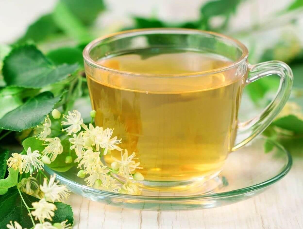 Липовый чай: польза и вред от применения