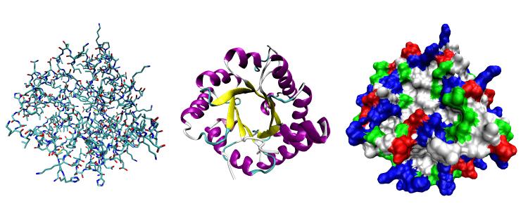 Нарушение белкового обмена: симптомы и методы лечения патологии