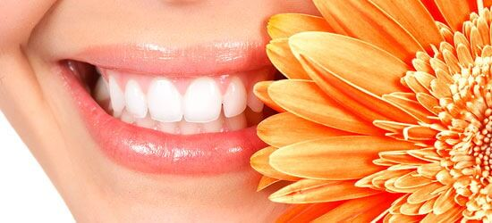 Строение полости рта человека: краткий экскурс в анатомию