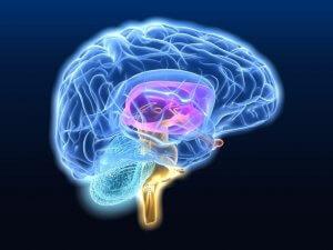 Признаки и лечение сужения сосудов головного мозга