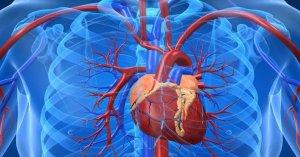 Зондирование сердца - эффективная диагностическая процедура