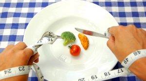 Принцип питания по Шелтону